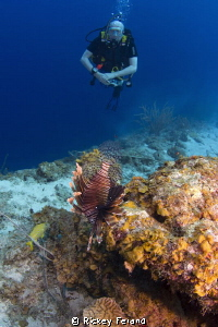 WA of a Lionfish and Diver - Tugboat, Curacao by Rickey Ferand 